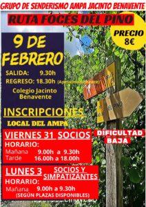 2020-02-08_FOCES DEL PINO